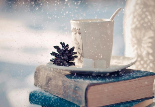winter-book